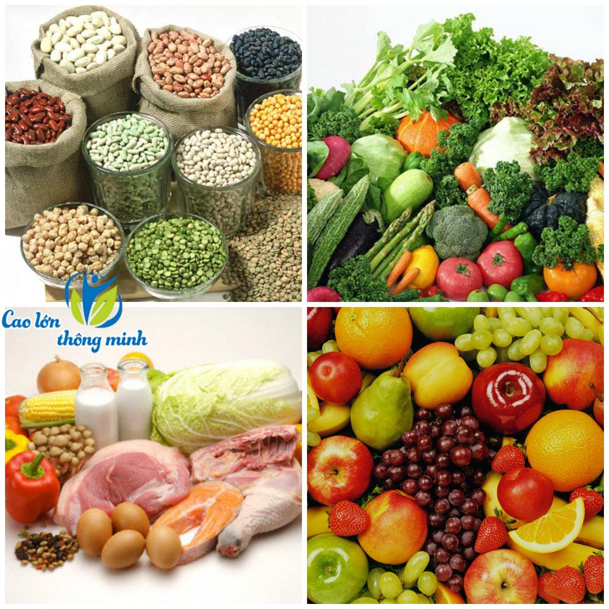 4 nhóm chất dinh dưỡng